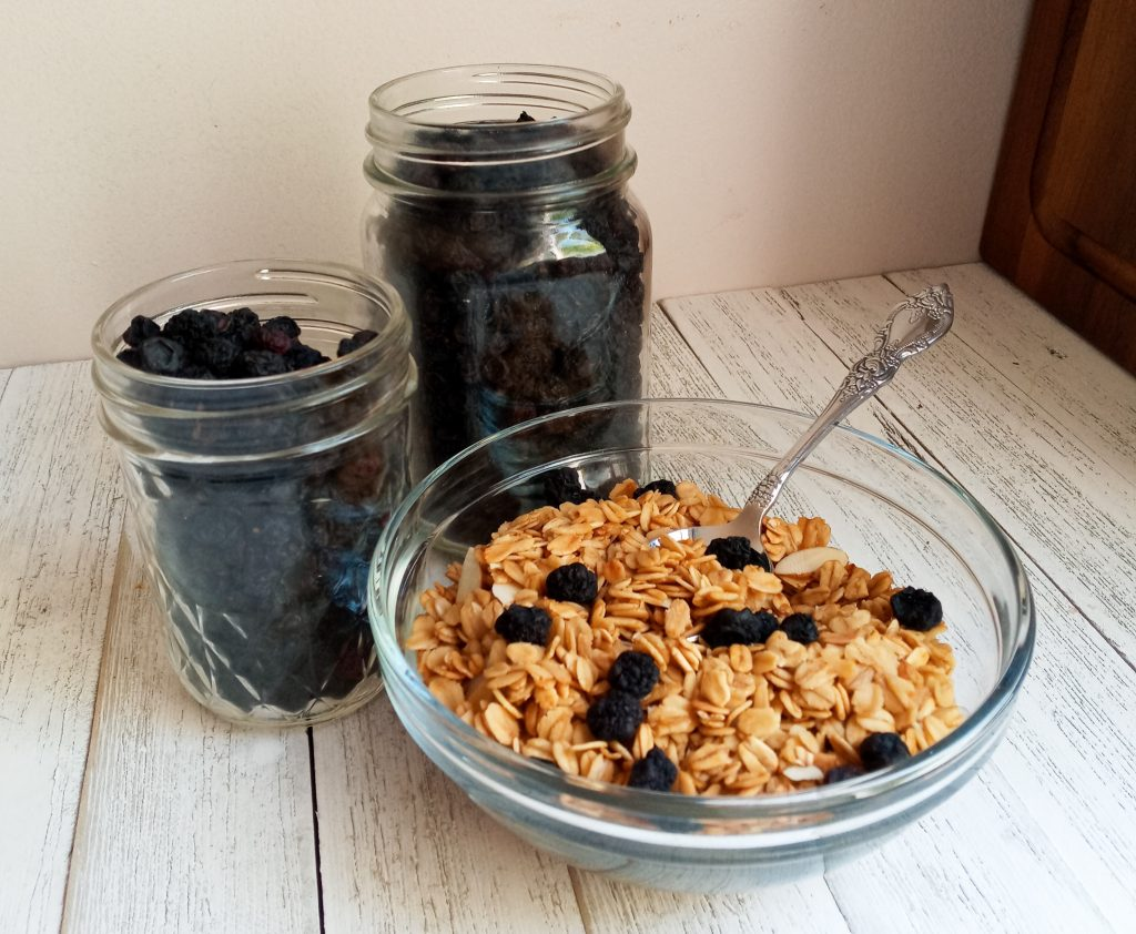 two jars of dried blueberries with a glass bowl of granola topped with more dried blueberries