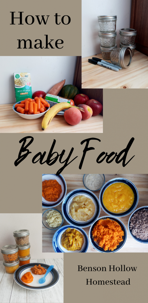 pin for homemade baby food